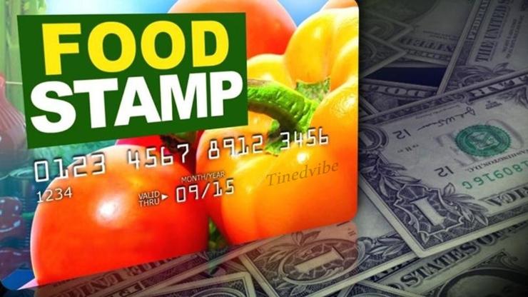 Food Stamp Login